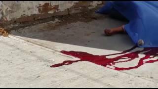 Cae de puente y muere tras brutal golpe en la cabeza.