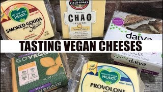Vegan Cheese Review BEST & WORST of 5 Different Flavors