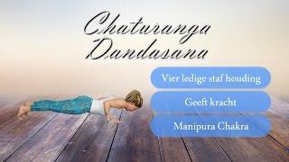 Step by Step | Chaturanga Dandasana, vier ledige staf houding