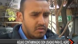 CAMPAÑA PLUSTLT - SALVEMOS EL RÍO GUADALQUIVIR