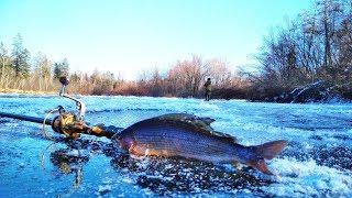 По тонкому льду!Зачётная рыбалка по заберегу!Хорошо отловились!