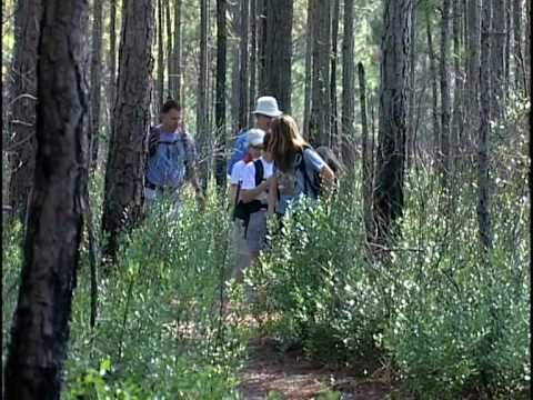 Florida Youth Conservation Centers Network