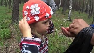 За малинной и грибами/Деревенская жизнь