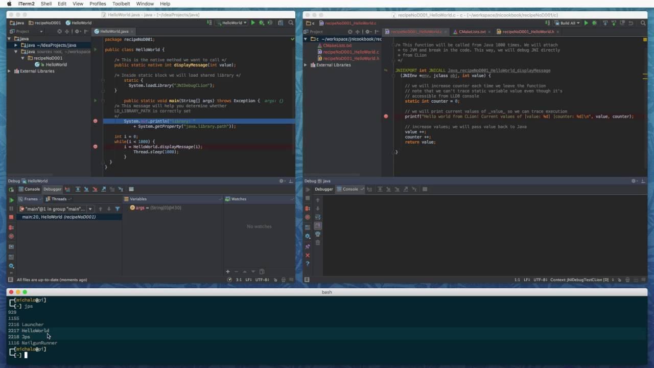 recipeNoD002 - Debugging JNI code with IntelliJ/CLion