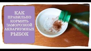 видео Замороженный мотыль