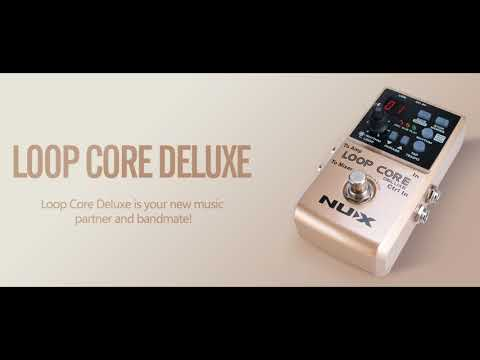 NUX FX LoopCore Deluxe Review By Vinai T