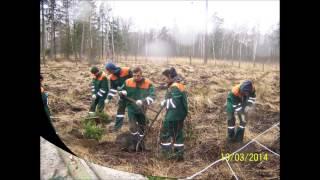 Praktyki zawodowe w Nadleśnictwie Milicz