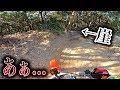 初めてのポケモン ブラック2を実況プレイ part19.5 - YouTube