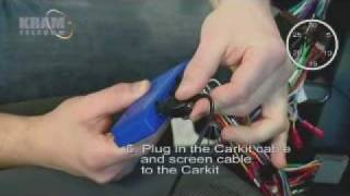 Parrot Installation - small.wmv