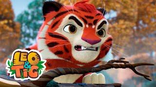 Leo & Tig - Outono na taiga (episódio)   Desenhos infantil 🐯🦁
