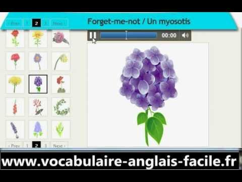 vocabulaire anglais les fleurs vocabulaire anglais facile. Black Bedroom Furniture Sets. Home Design Ideas