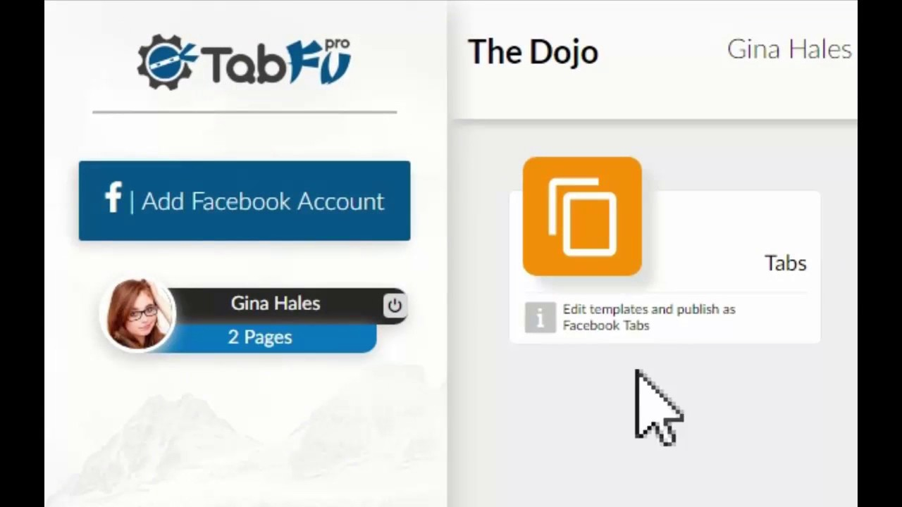 Tabfu Pro Review and Demo - Create Profit generating Facebook landing pages, Ads with few clicks!