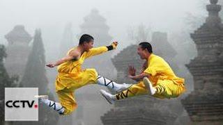 Документальные фильмы:Китайские боевые искусства Серия 1 Тайные книги Кунфу