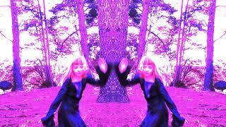 ✨ Magic Mirror Dancing! ✨🎶⚡ Harry Potter Music ⚡🎶🔮 Fun Magical Twin Dance for Kids
