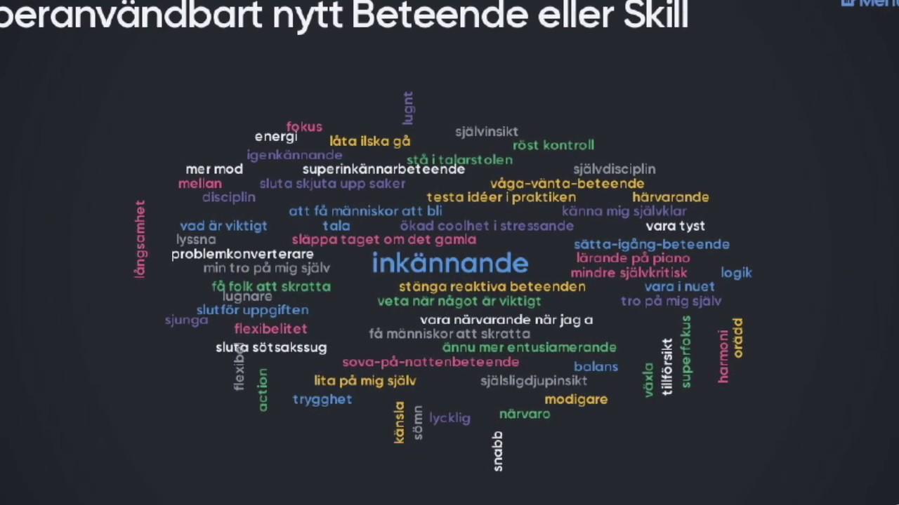 Ulf Sandström & Fredrik Praesto - Beteendekompassen