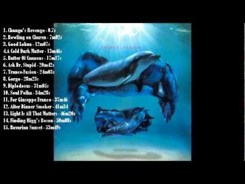 Frank Zappa - Trance-Fusion [full album]