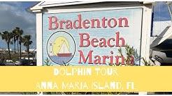 Bradenton Beach Marina Dolphin Tour - Anna Maria Island Florida
