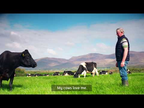 Kerry's Dairy Flagship Farmer Programme
