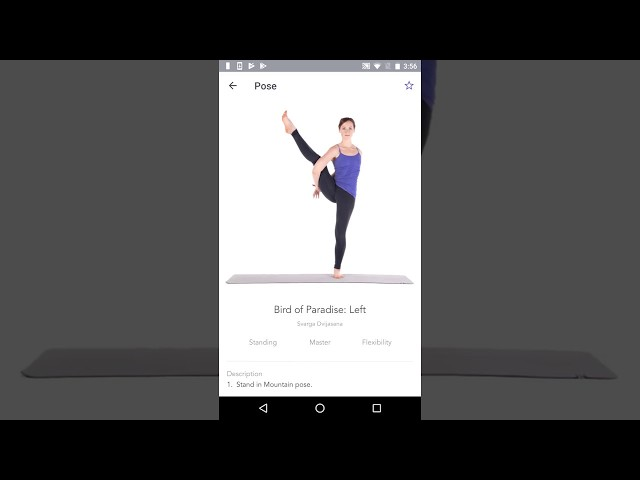 10 best yoga apps for Android to strengthen that core! - Android