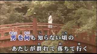 浜圭介 - 誘蛾灯