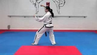 Dan Gun Tul and basic movements for grading to 7th kup