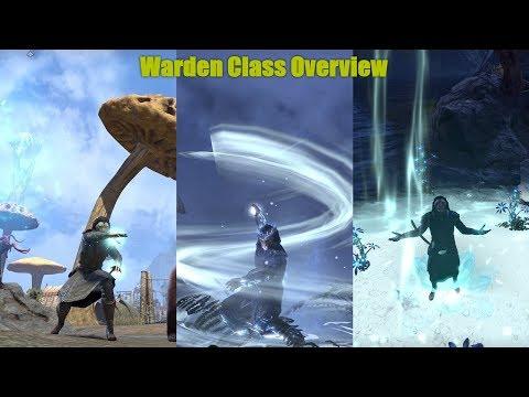 The Elder Scrolls Online Let's Talk; Warden Overview