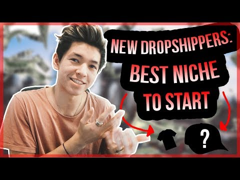 NEW DROPSHIPPERS: BEST NICHE TO START 2018 (shopify drop shipping)