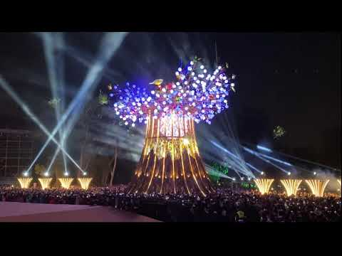 2020台灣燈會主燈「光之樹」正式開燈