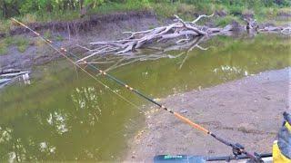Fishing on a Sandbar for Flathead Catfish! (Sandbar Shore Lunch)