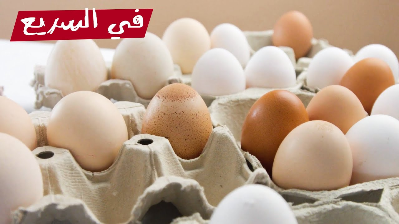 إيه الفرق بين البيض الأبيض والأحمر؟؟
