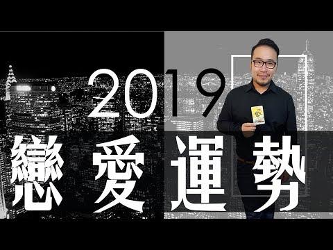 【奧斯塔羅】2019運勢大解析|戀愛運勢|Love fortune of 2019