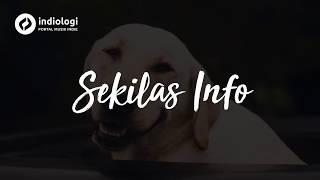 Jason Ranti - Sekilas Info (Unofficial Lyrics)