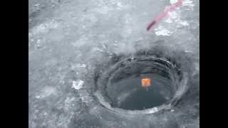 Зимова риболовля в Лопотово