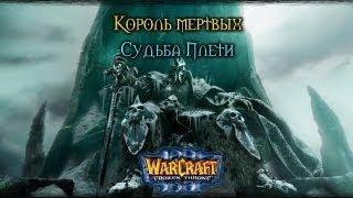 Warcraft 3 Король мертвых прохождение. Судьба Плети