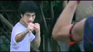 李小龙vs泰拳王 flv