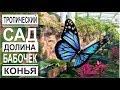 Турция: Тропическая долина бабочек. Лето круглый год. Сад цветов в Конье
