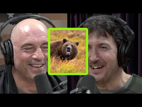 Glenn Villeneuve on How to Tan a Grizzly Hide