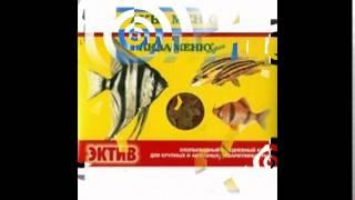 tetramin корм для рыб(http://infoebook.ru/korm-fish Корма для всех видов рыб! Крупнейший интернет-магазин зоотоваров в рунете! Лучшие товары,..., 2014-10-03T08:40:39.000Z)