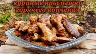 Рецепт копчения крылышек, копчение в коптильне горячего копчения