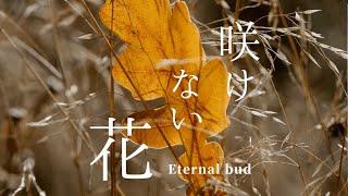 煉獄庭園 feat.AIきりたん 咲けない花