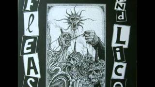 FLEAS AND LICE - Global Destruction  (Side B)