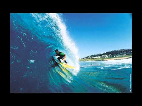 surf song fenix tx