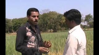 Success Story- Amrit Paani Hindi ASA Madhyapradesh