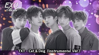 Cat And Dog Txt Mp3 Dl
