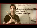 Aye Mere Vatan Ke Logo Flute Lesson In Hindi Tutorial For 26 Jane. Song For Indian Army 2017 video