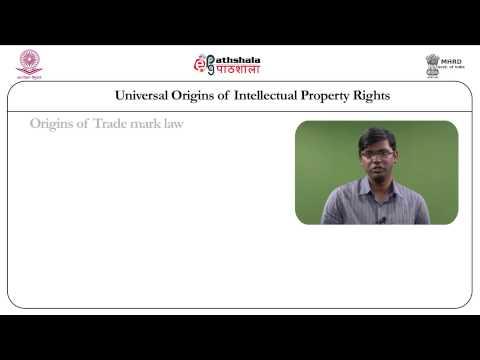 Universal origins of intellectual property