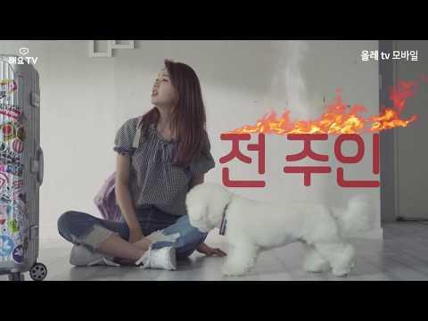(빅스) VIXX KEN (켄) In Heyo TV New Web Drama Tofu Personified Full Trailer 📽