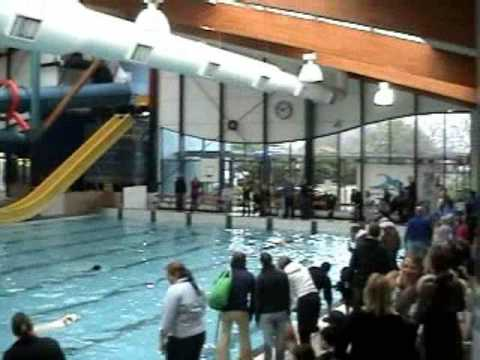 Dog swimming race