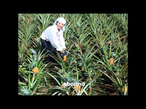 Region IX Hymn, Zamboanga Peninsula, OUR EDEN LAND, slide show by MARLOU ELCAMEL.wmv