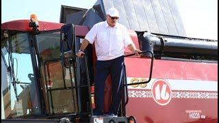 Президент Беларуси посещает хозяйства Шкловского и Оршанского районов